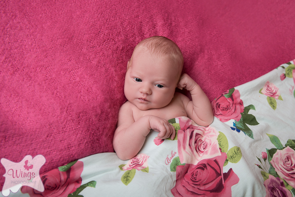 baby Photography Chesterfield Derbyshire