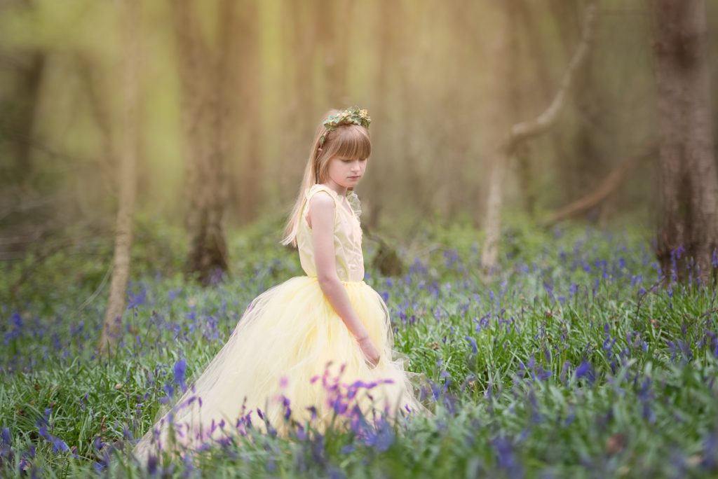 Bluebell photography sessions